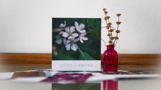 photo calendar on a desk