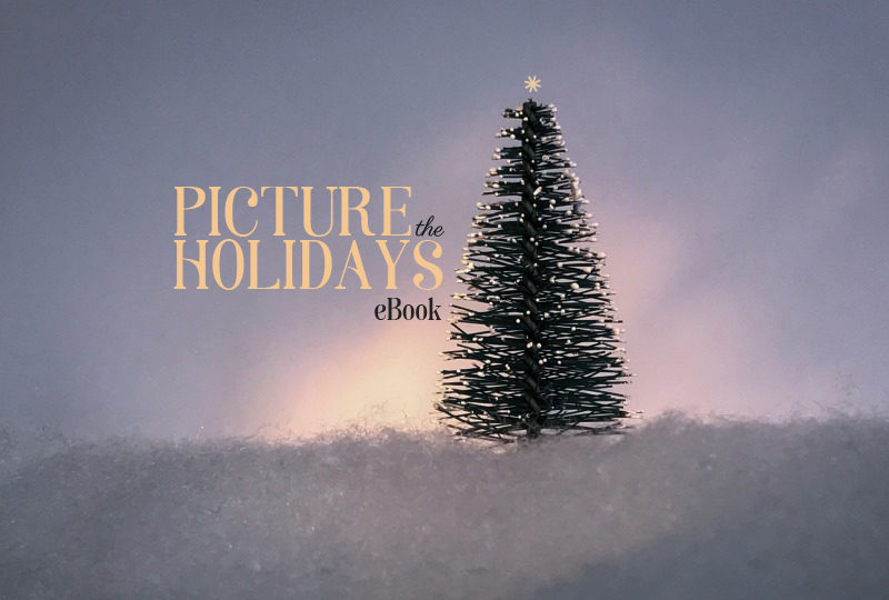 Picture the Holidays EBook