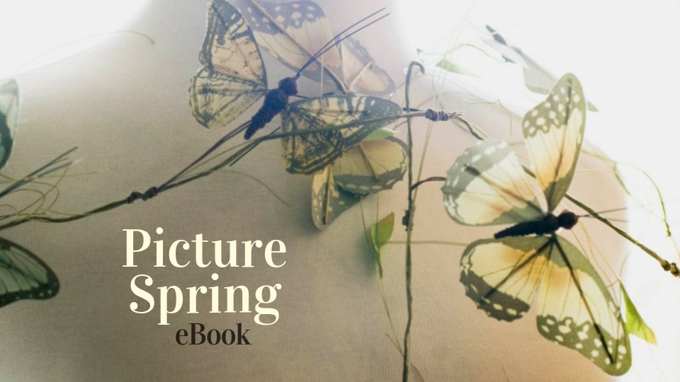Picture Spring eBook Header