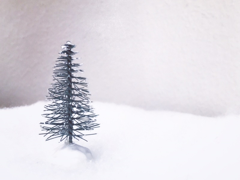 A mini craft Christmas tree landcape
